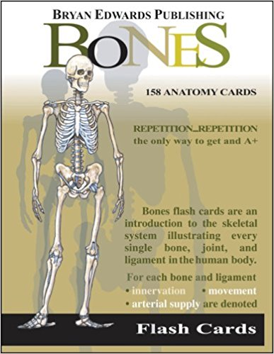 The BonesFlash Cards