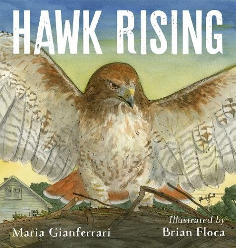 Hawk RisingMaria Gianferrari