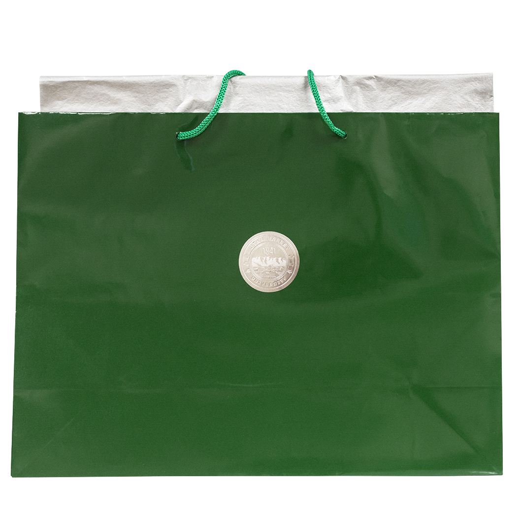 Image For Large Hi Gloss Bag<br>With Tissue Paper