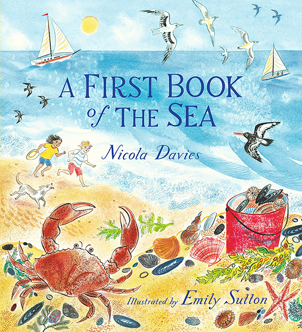 Image For A First Book<br>of the Sea<br>Nicola Davies