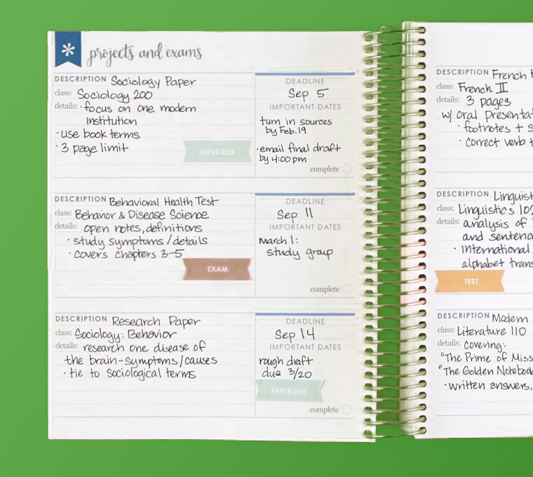 Image For Erin Condren: Layers Academic Planner